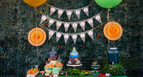 Second Birthday Party Themes