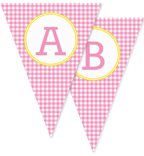 Pink Gingham Bunting
