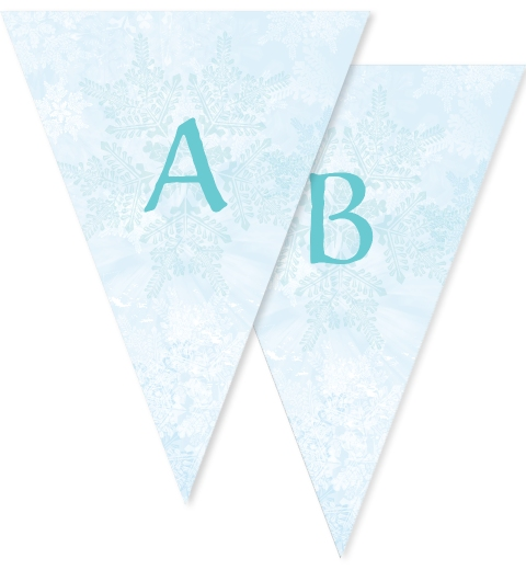 Snowflake Bunting Flags