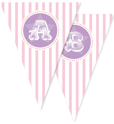 Pink Circus Party Bunting Flags