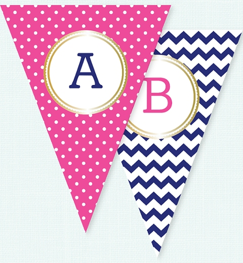 Fuschia Polka Dot & Navy Chevron Bunting Flags